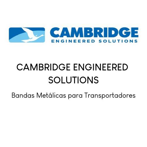 Cambridge International ES